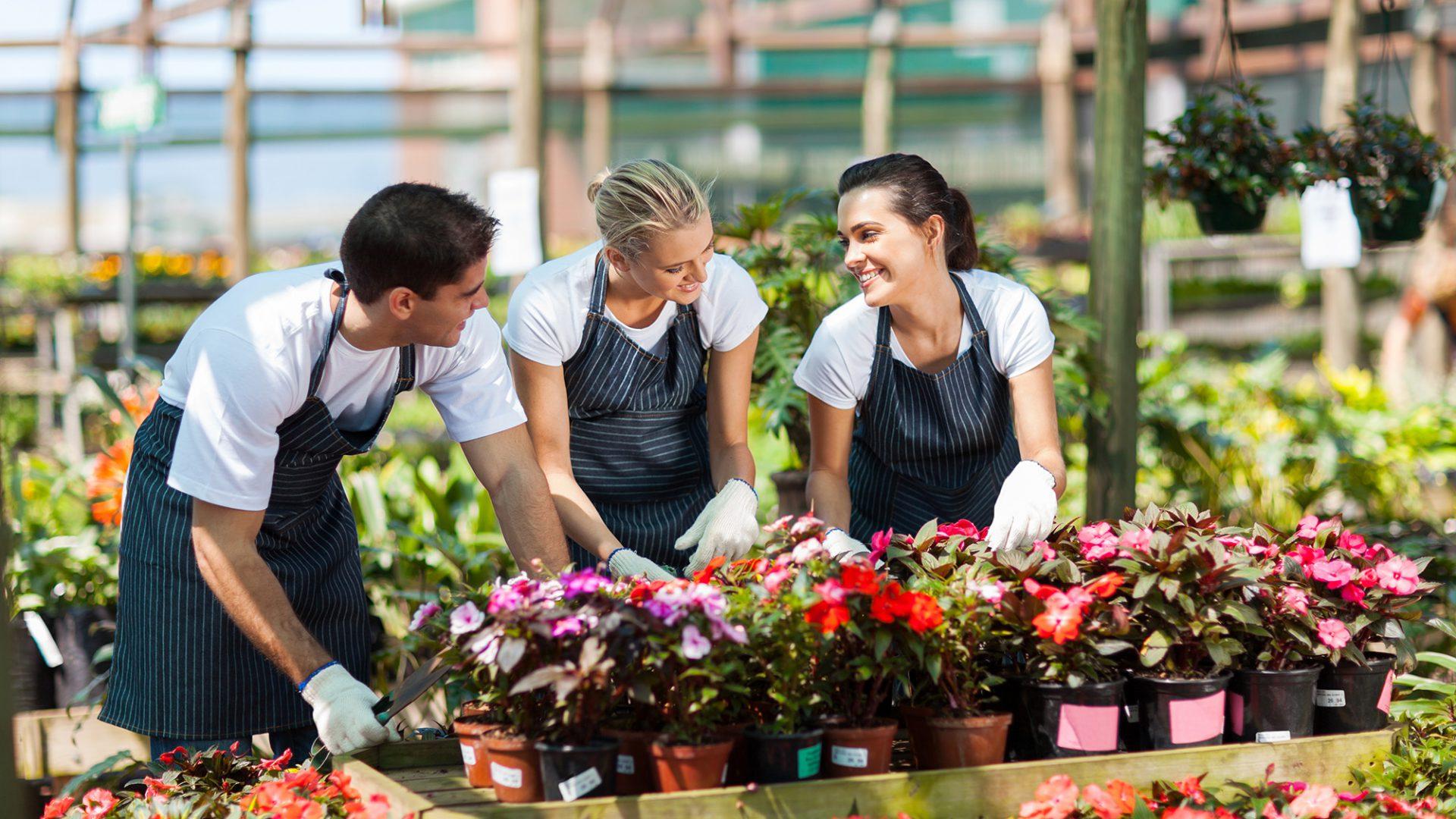 De groei en bloei van de kleine ondernemer